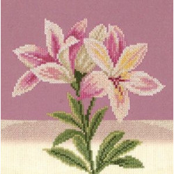 Rag Doll Kit Cat Tasia AM100041I