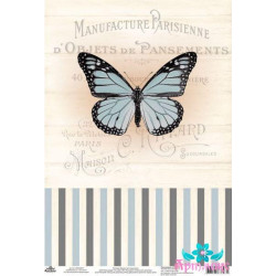 Paint by Numbers Kit Owl T16130015
