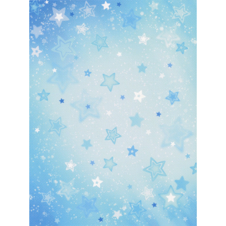 Fence and Flowers PN/0162522