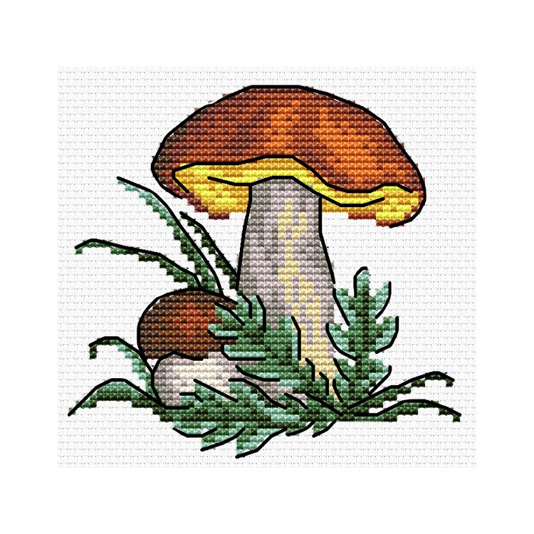 Įrėmintas veidrodis 8490875 6*8