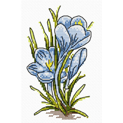 Įrėmintas veidrodis 70*100 8528R845
