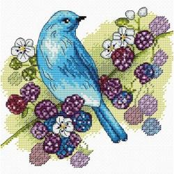 Įrėmintas veidrodis P8526EFG 6*6