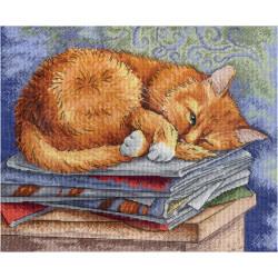 Garden Steps D70-35362