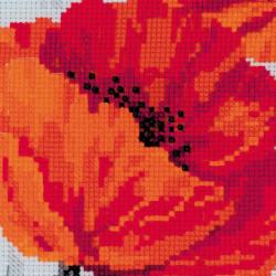 Figurines Turtle SANS-41