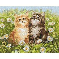 Make Love, not War WC0205