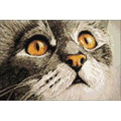 Happy Birthday (Retro Car) WC0275