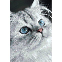 Wizardi Painting by Numbers Kit Winter Landscape 40x50 cm A073