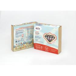Deimantines mozaikos rinkinys WD2489