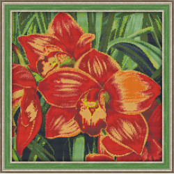 Diamond painting kit Seashells on the Map AZ-1087