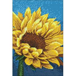Christmas Expectation SLETI943
