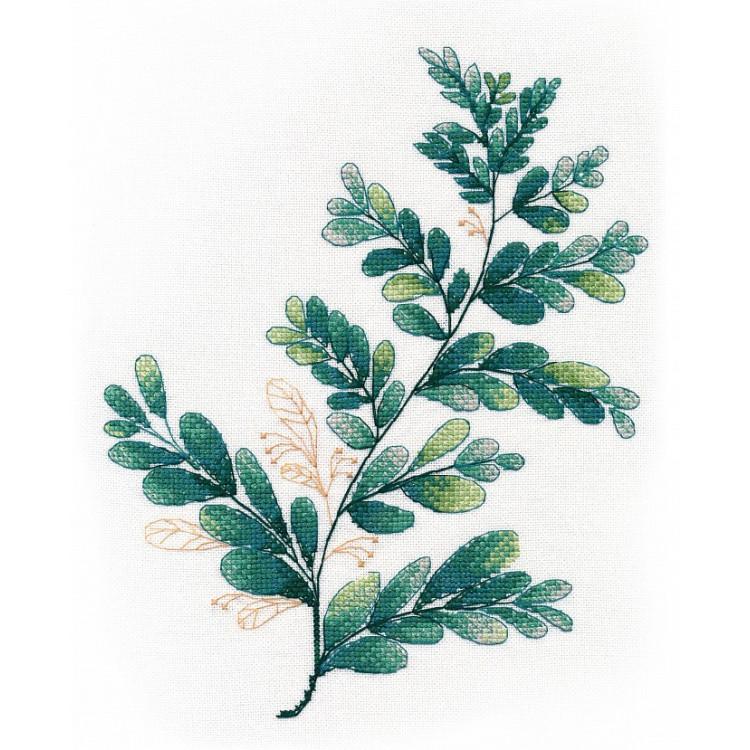 Fragrant Poppies 40x50 cm B105