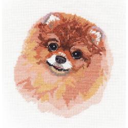 Owl Look SNV-725