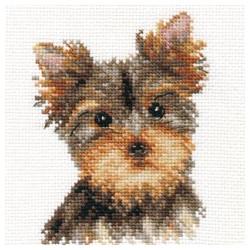 Apple garden S2-10