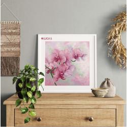 Red leaves S/TYA001