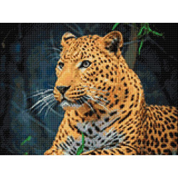 Cushion kits for embroidery 40/40cm SA99041