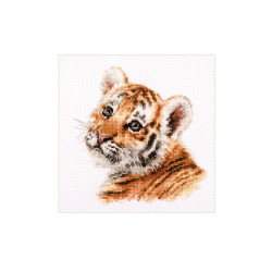 Tulip and Butterfly S2-14