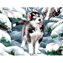 Pink Roses SBL22400