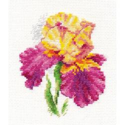 Blooming garden. Peonies S2-21