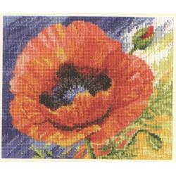 Tulips S2-29