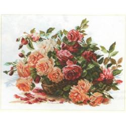White Roses S2-32