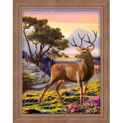 Fairy 0011 PT