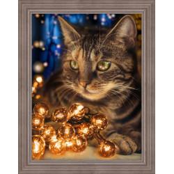 Unicorn 0024 PT
