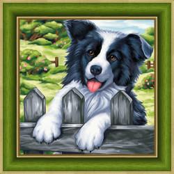Little Bee HB001