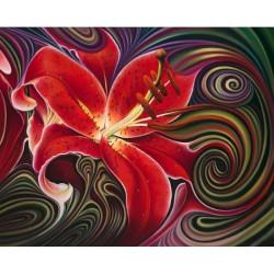 Ballerina PN/35012