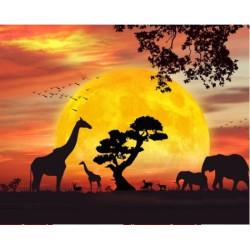 Ballet Silhouette 2 PN/35063