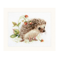 (Discontinued) Dutch Tulips S/LTS046