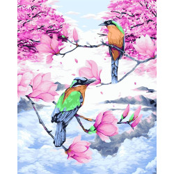Irises 100/024