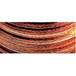 Winter House SK51
