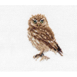 Birds of Paradise S/RS016