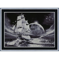 Dots 2mm Kakao AM556036T